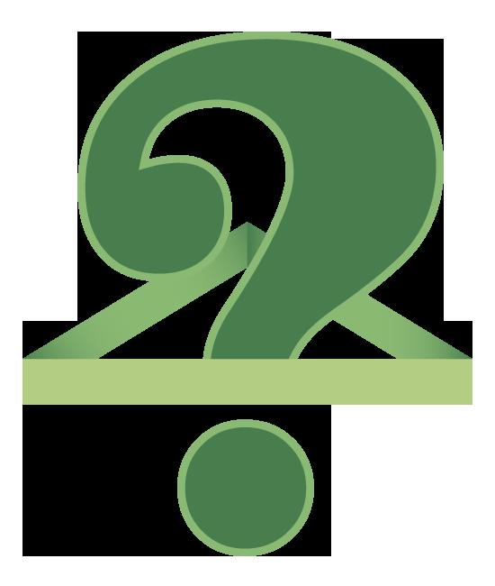 Che cosa è un calcolo renale?